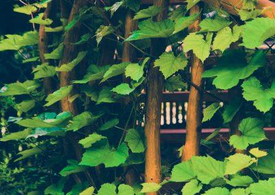 05_fotografia_hoteli_pensjonatów_agroturystyka_turystyka_01